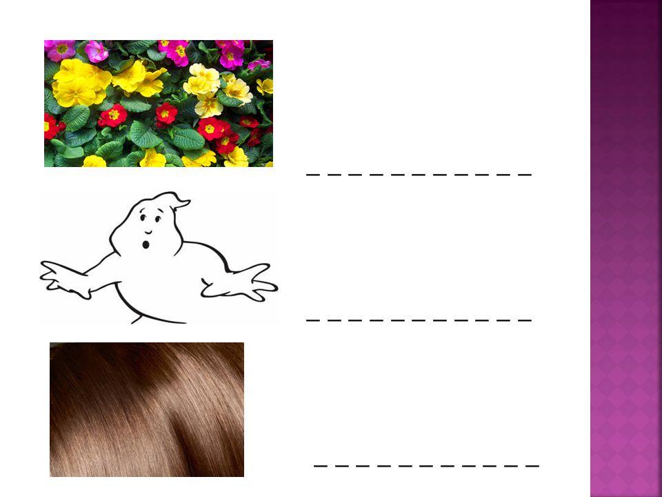  APPLE  BLOUSE  CAR  DOLL  EAR  FLOWERS  GHOST  HAIR