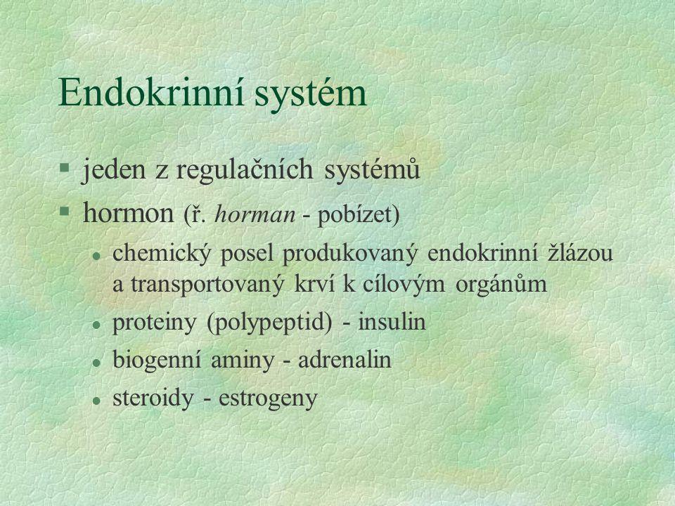 Endokrinní systém §jeden z regulačních systémů §hormon (ř. horman - pobízet) l chemický posel produkovaný endokrinní žlázou a transportovaný krví k cí
