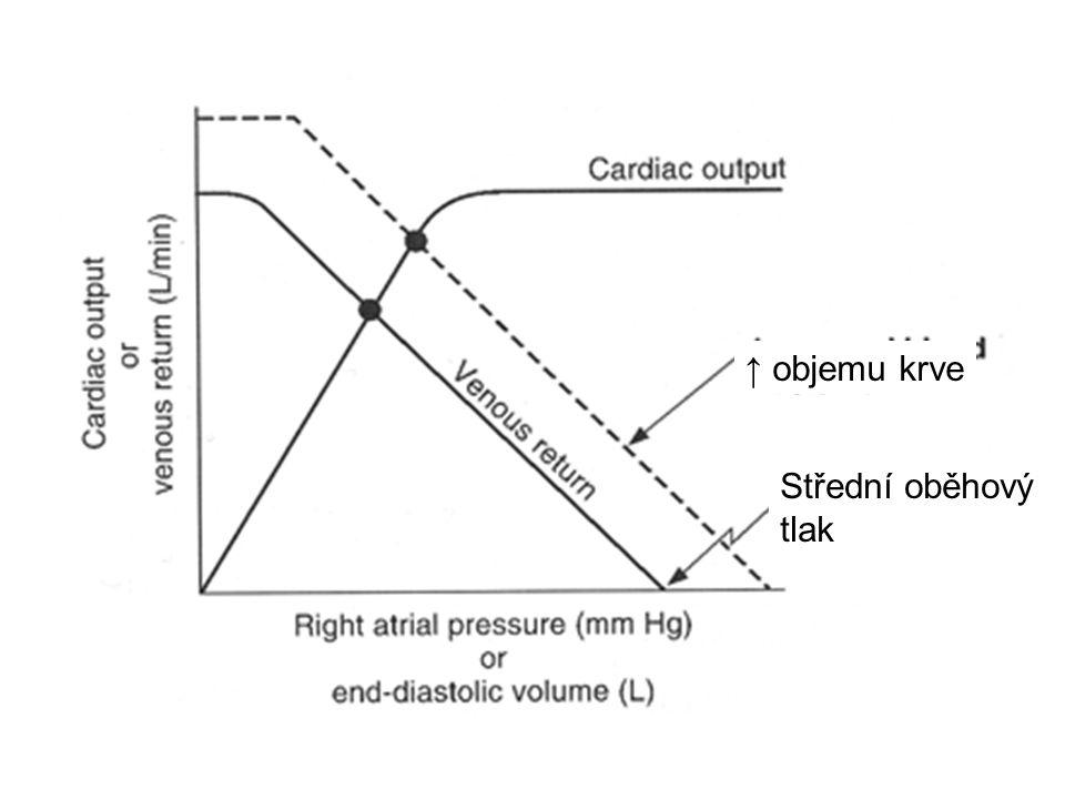 ↑ objemu krve Střední oběhový tlak