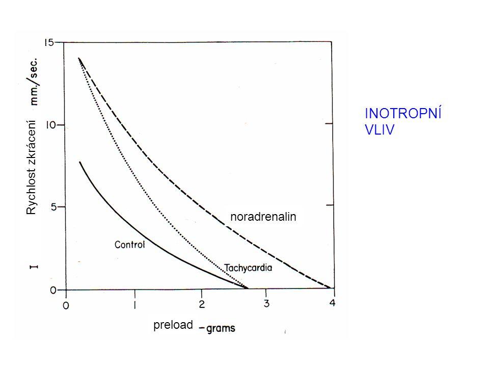 INOTROPNÍ VLIV Rychlost zkrácení preload noradrenalin