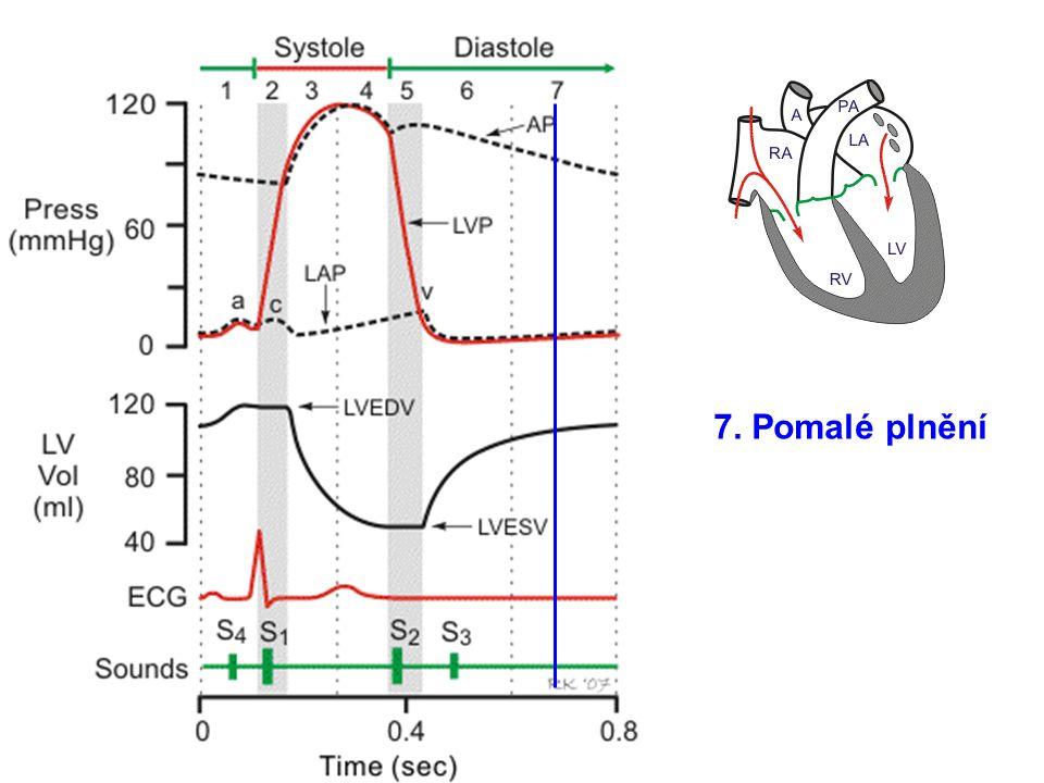 CO Venosní tlak Střední oběhový tlak