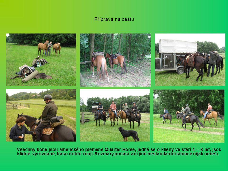 Příprava na cestu Všechny koně jsou amerického plemene Quarter Horse, jedná se o klisny ve stáří 4 – 8 let, jsou klidné, vyrovnané, trasu dobře znají.