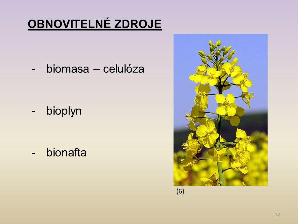 12 OBNOVITELNÉ ZDROJE -biomasa – celulóza -bioplyn -bionafta (6)