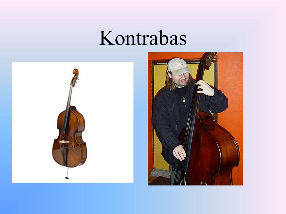 Žesťové nástroje Rozechvění sloupce pomocí hráčova dechu Lesní roh, trubka, pozoun, tuba