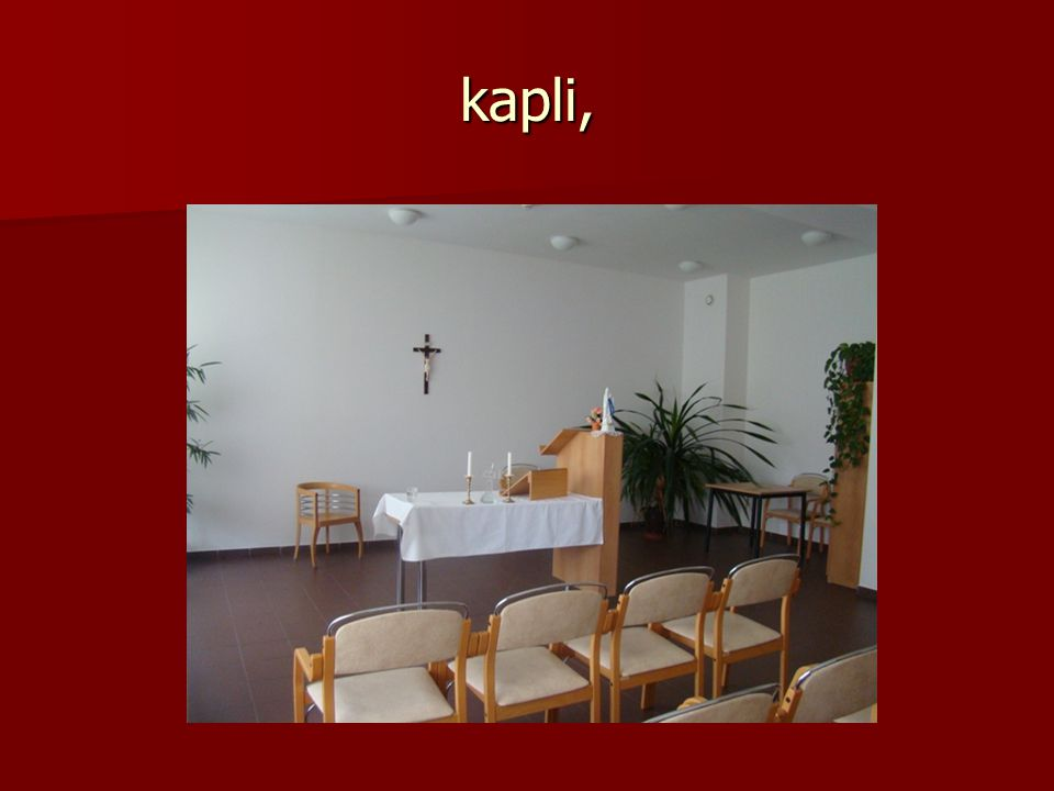 kapli,