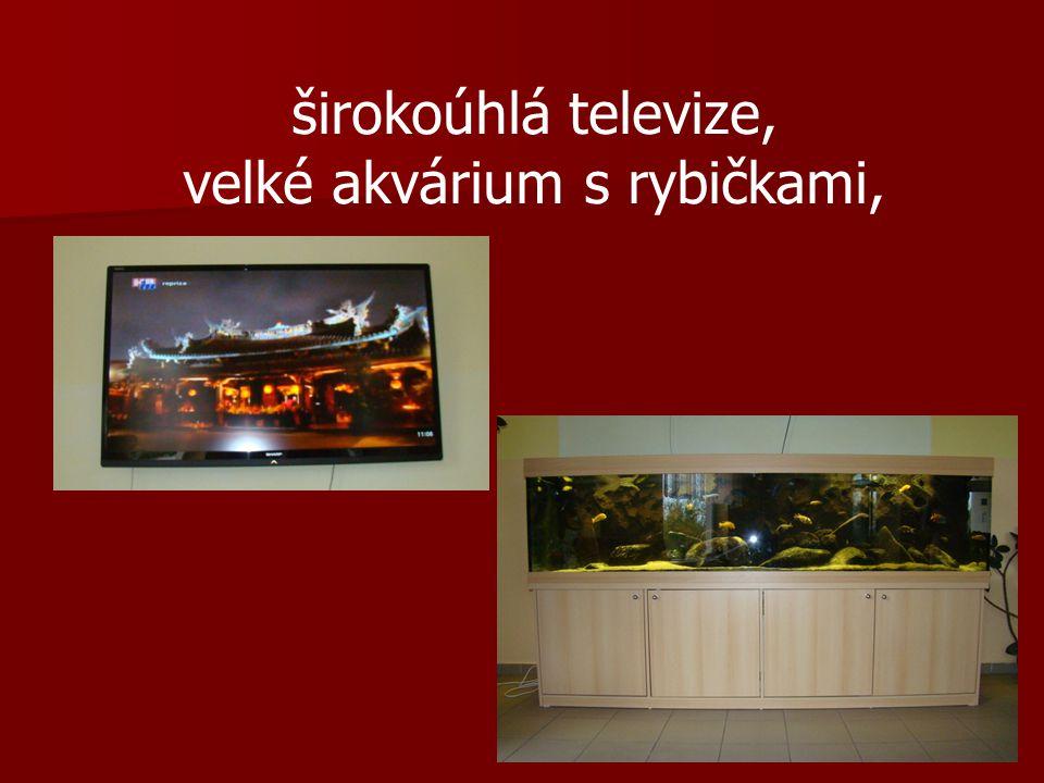širokoúhlá televize, velké akvárium s rybičkami,