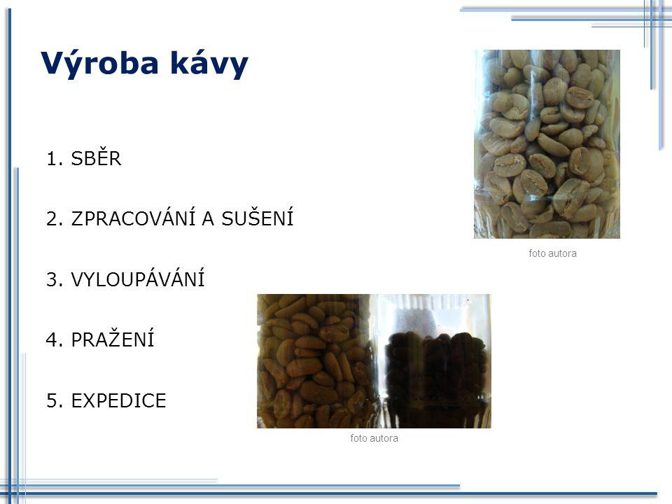 Výroba kávy 1.SBĚR 2.ZPRACOVÁNÍ A SUŠENÍ 3.VYLOUPÁVÁNÍ 4.PRAŽENÍ 5.EXPEDICE foto autora