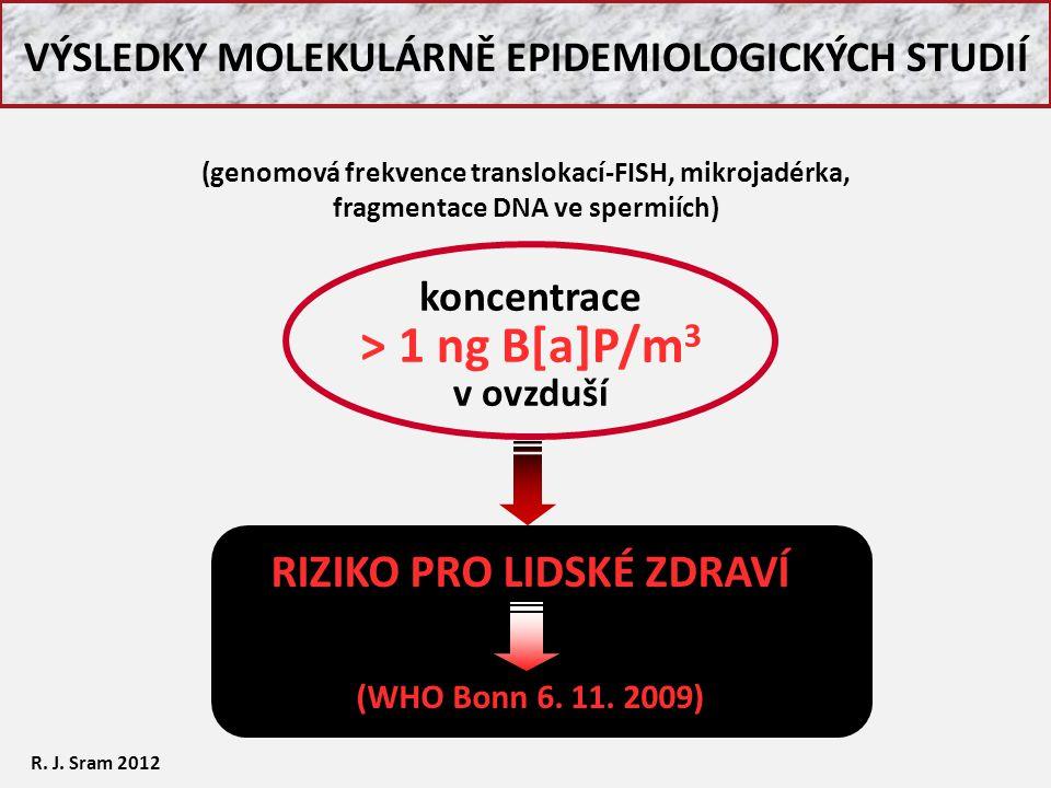 RIZIKO PRO LIDSKÉ ZDRAVÍ (WHO Bonn 6. 11. 2009) koncentrace > 1 ng B[a]P/m 3 v ovzduší VÝSLEDKY MOLEKULÁRNĚ EPIDEMIOLOGICKÝCH STUDIÍ R. J. Sram 2012 (