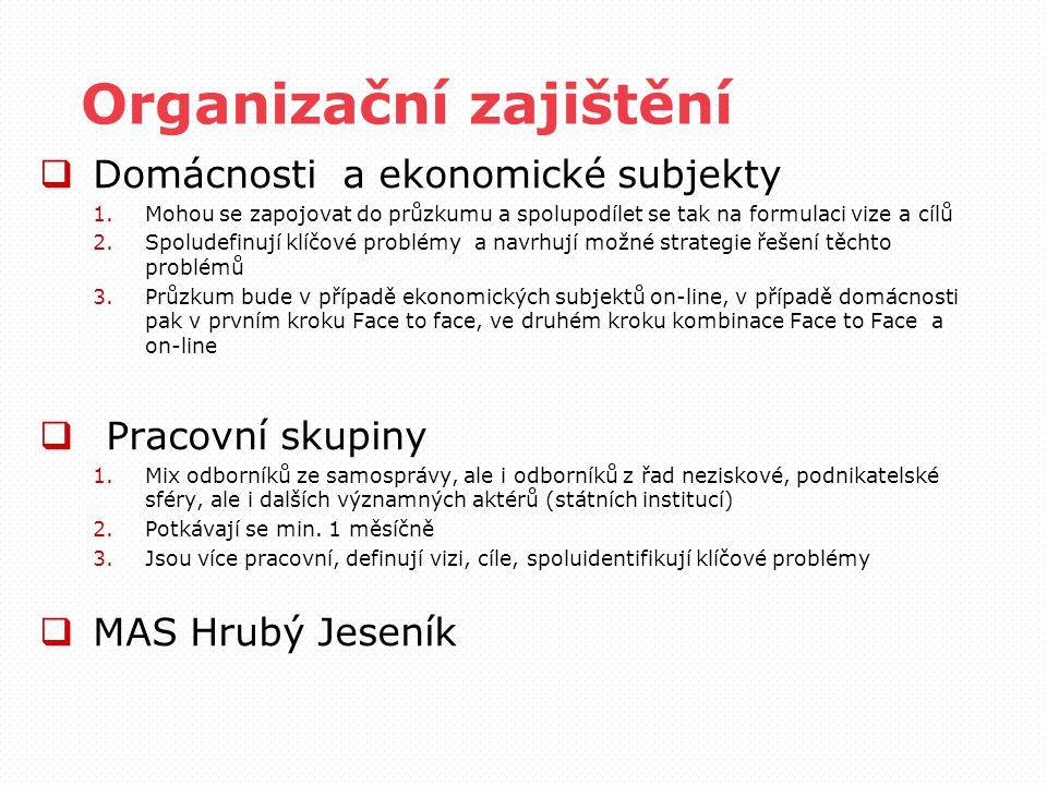Organizační zajištění  Domácnosti a ekonomické subjekty 1.Mohou se zapojovat do průzkumu a spolupodílet se tak na formulaci vize a cílů 2.Spoludefinu