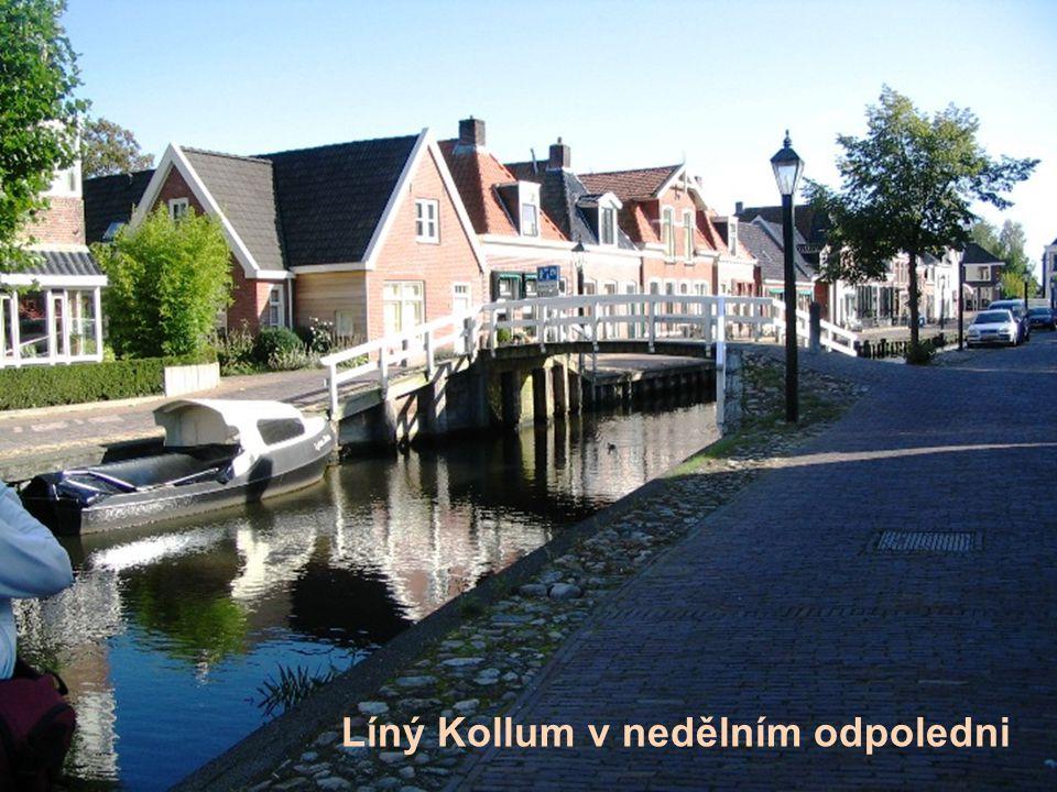Líný Kollum v nedělním odpoledni