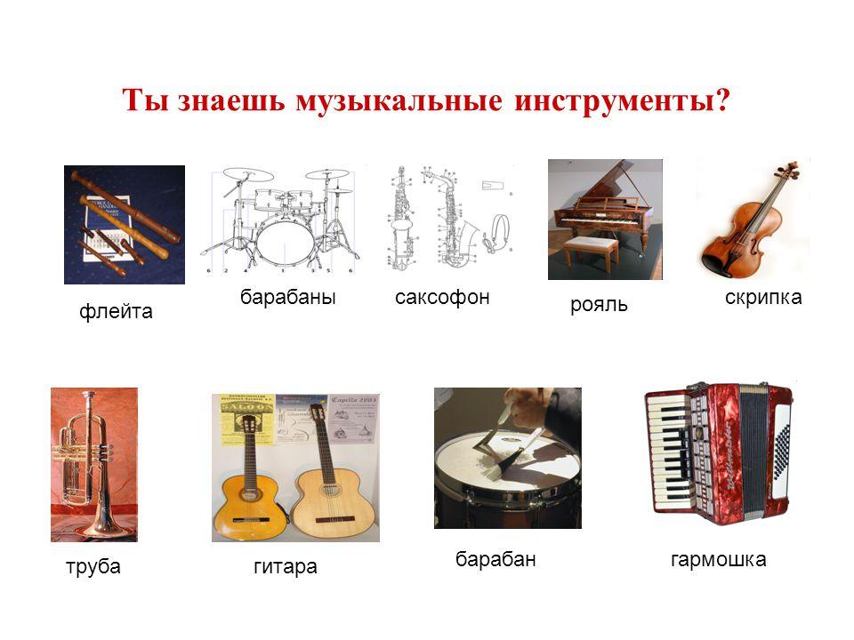 Ты знаешь музыкальные инструменты? флейта барабанысаксофон рояль скрипка трубагитара барабангармошка
