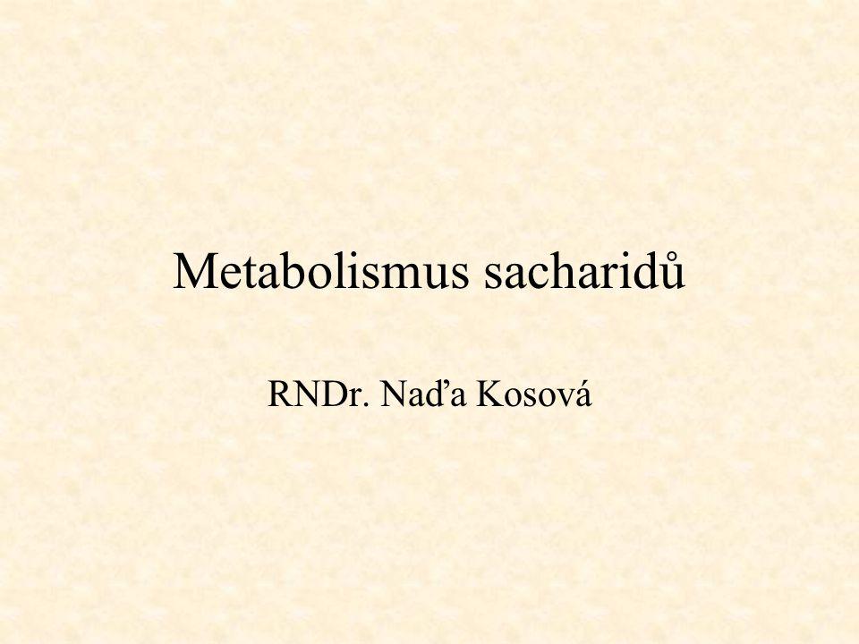 Metabolismus sacharidů RNDr. Naďa Kosová