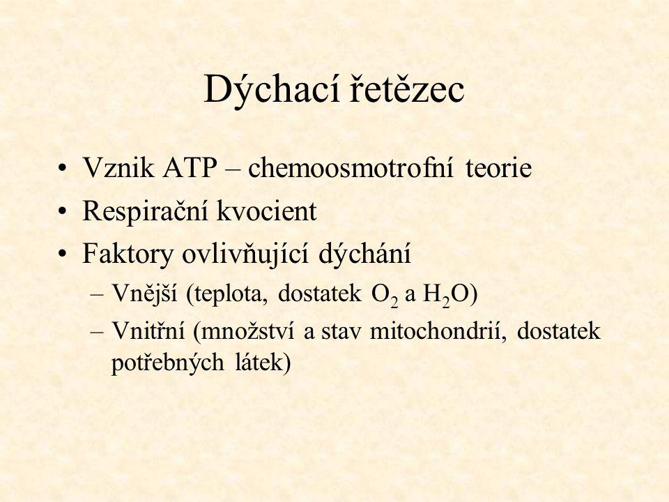Dýchací řetězec Vznik ATP – chemoosmotrofní teorie Respirační kvocient Faktory ovlivňující dýchání –Vnější (teplota, dostatek O 2 a H 2 O) –Vnitřní (m