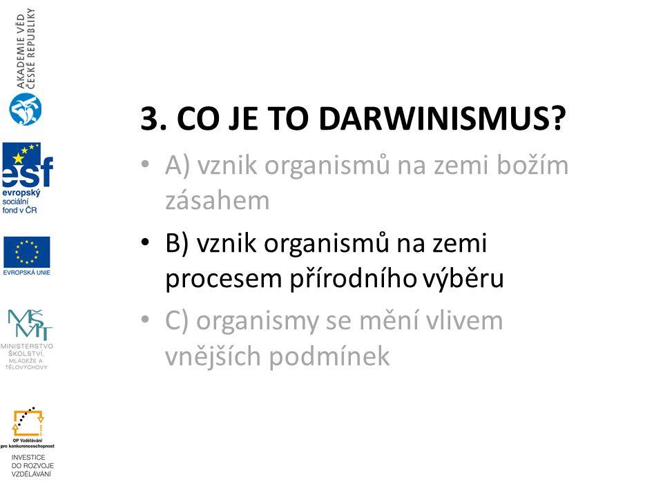 4.Ch.