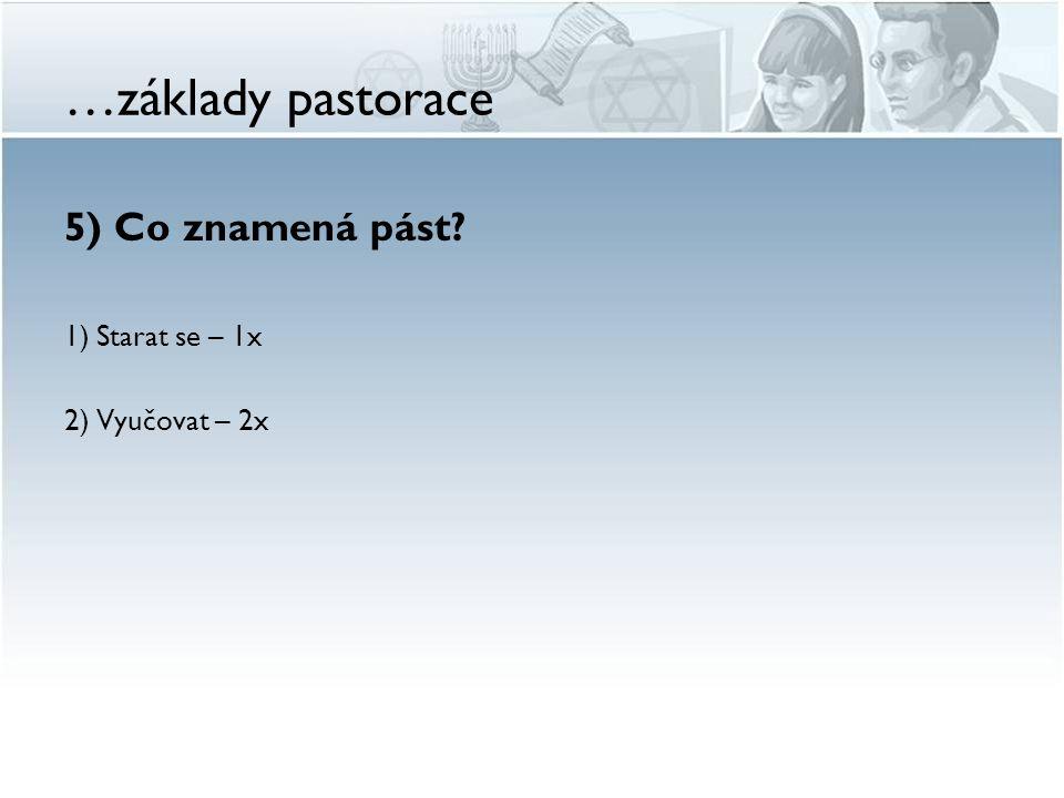 …základy pastorace 5) Co znamená pást? 1) Starat se – 1x 2) Vyučovat – 2x