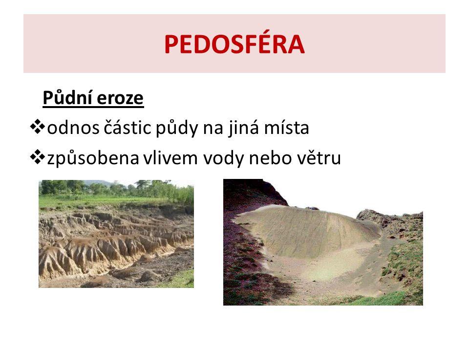 PEDOSFÉRA Význam půdy  umožňuje obživu pro obyvatele planety, důležitá pro rostliny, živočichy, houby, mikroorganismy  musíme zabraňovat znečišťování půdy  musíme předcházet úbytku půdy
