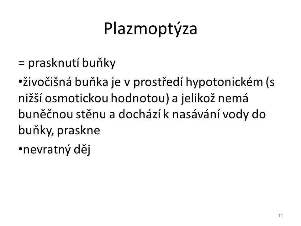 Plazmoptýza = prasknutí buňky živočišná buňka je v prostředí hypotonickém (s nižší osmotickou hodnotou) a jelikož nemá buněčnou stěnu a dochází k nasá