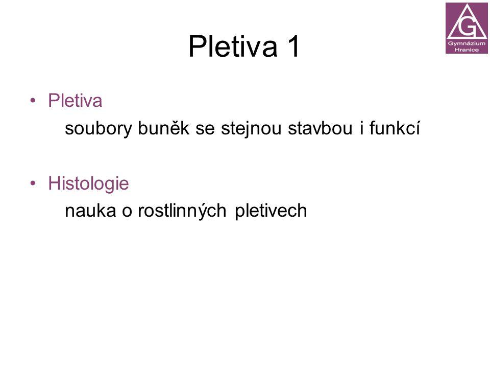Pletiva 1 Pletiva Histologie soubory buněk se stejnou stavbou i funkcí nauka o rostlinných pletivech