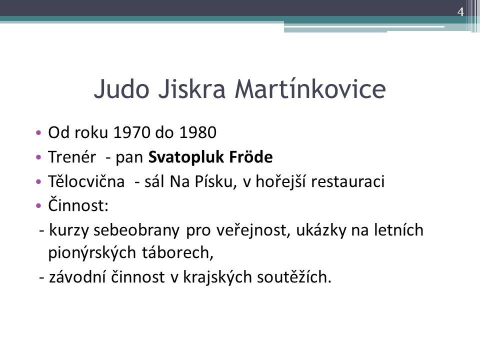 O POHÁR HEJTMANA Královéhradeckého kraje Rok 2013 – II.