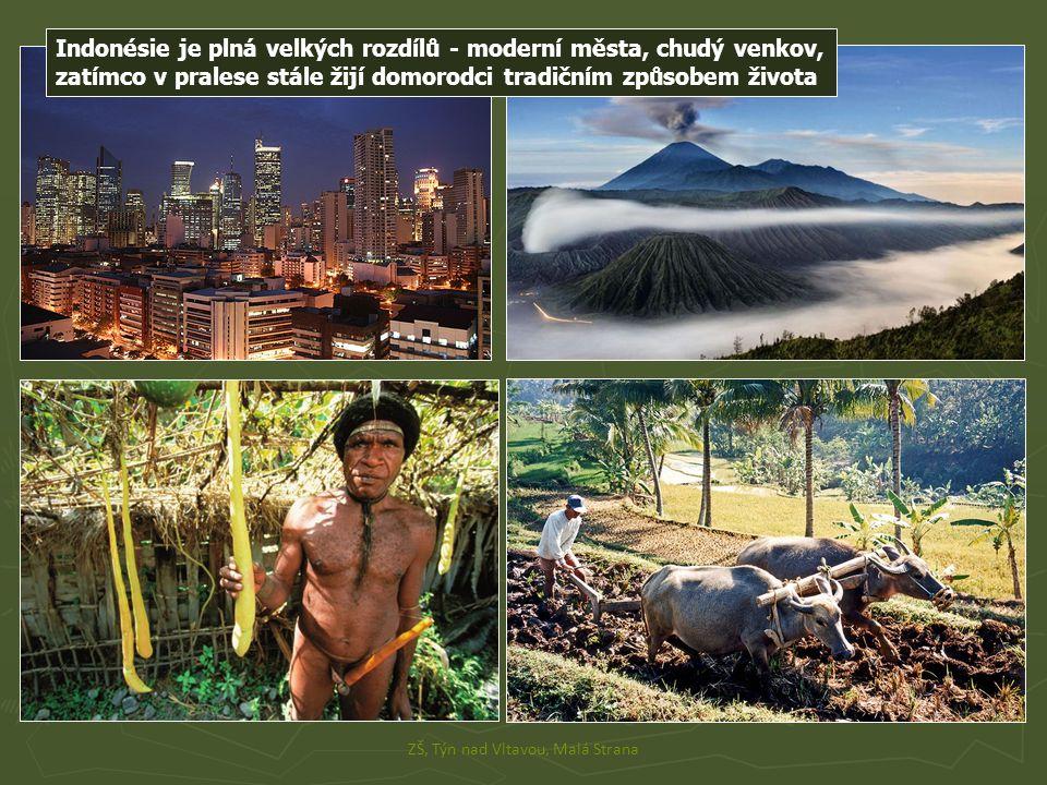 Indonésie je plná velkých rozdílů - moderní města, chudý venkov, zatímco v pralese stále žijí domorodci tradičním způsobem života