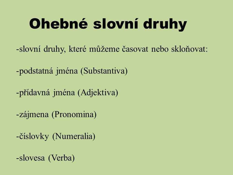 Ohebné slovní druhy -slovní druhy, které můžeme časovat nebo skloňovat: -podstatná jména (Substantiva) -přídavná jména (Adjektiva) -zájmena (Pronomina) -číslovky (Numeralia) -slovesa (Verba)