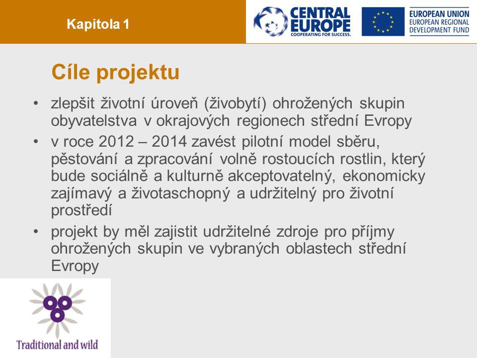 strana 2 Cíle projektu zlepšit životní úroveň (živobytí) ohrožených skupin obyvatelstva v okrajových regionech střední Evropy v roce 2012 – 2014 zavést pilotní model sběru, pěstování a zpracování volně rostoucích rostlin, který bude sociálně a kulturně akceptovatelný, ekonomicky zajímavý a životaschopný a udržitelný pro životní prostředí projekt by měl zajistit udržitelné zdroje pro příjmy ohrožených skupin ve vybraných oblastech střední Evropy Kapitola 1