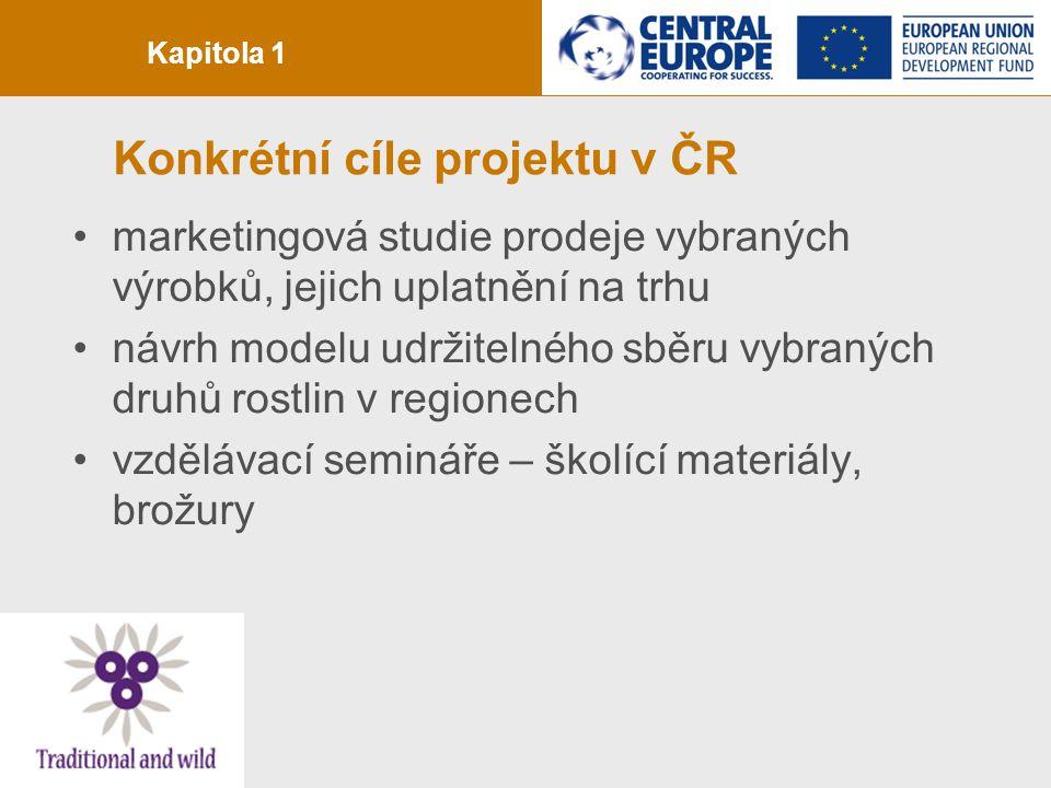 strana 4 Konkrétní cíle projektu v ČR marketingová studie prodeje vybraných výrobků, jejich uplatnění na trhu návrh modelu udržitelného sběru vybranýc
