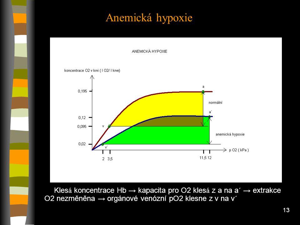 12 Plicní emfyzém - ničen í elastick é tk á ně ve stěn á ch alveolů → m í sto alveolů velk é vzduchov é v á čky - m é ně kapil á r se dostane k alveol