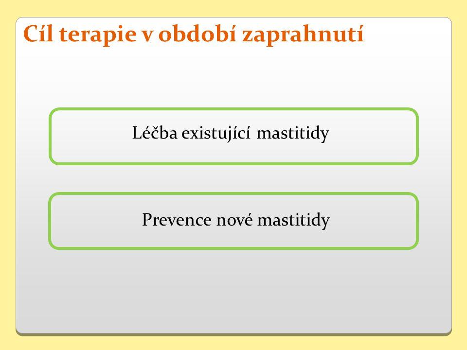 Prevence nové mastitidy Cíl terapie v období zaprahnutí Léčba existující mastitidy