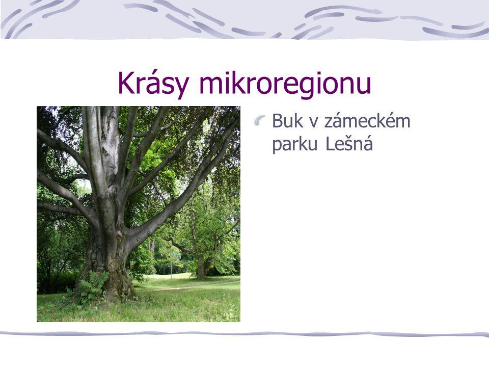 Krásy mikroregionu Buk v zámeckém parku Lešná