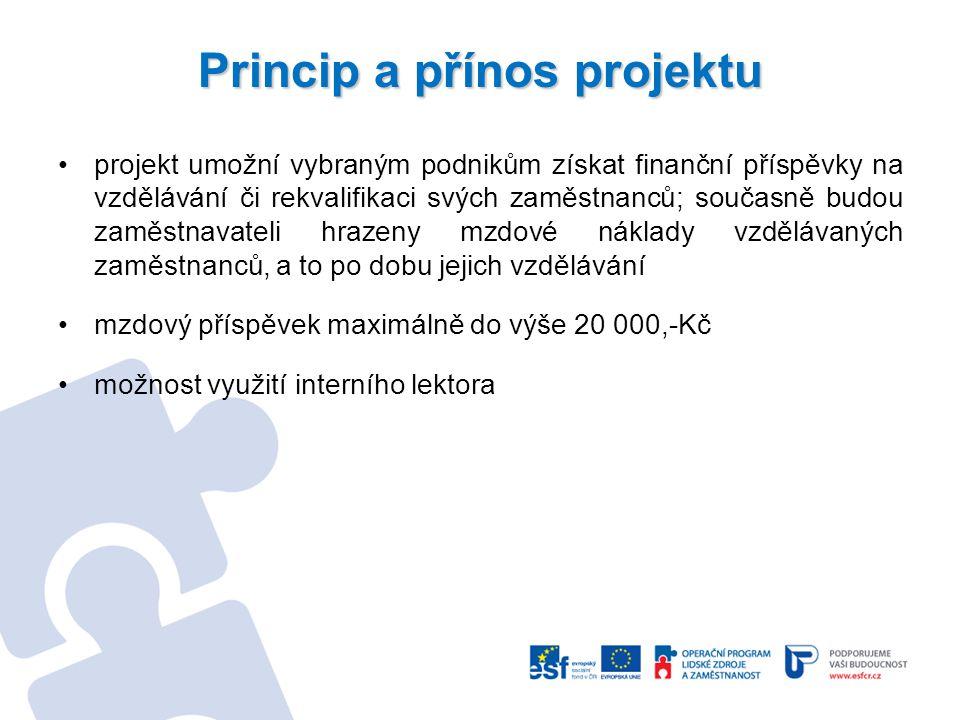 Princip a přínos projektu projekt umožní vybraným podnikům získat finanční příspěvky na vzdělávání či rekvalifikaci svých zaměstnanců; současně budou