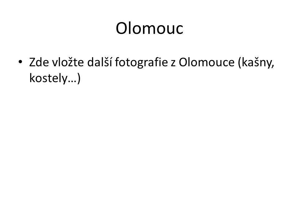 Olomouc Zde vložte další fotografie z Olomouce (kašny, kostely…)