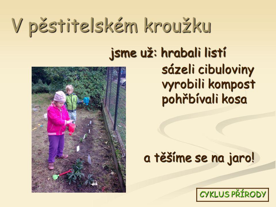 V pěstitelském kroužku jsme už: hrabali listí sázeli cibuloviny vyrobili kompost pohřbívali kosa CYKLUS PŘÍRODY a těšíme se na jaro!