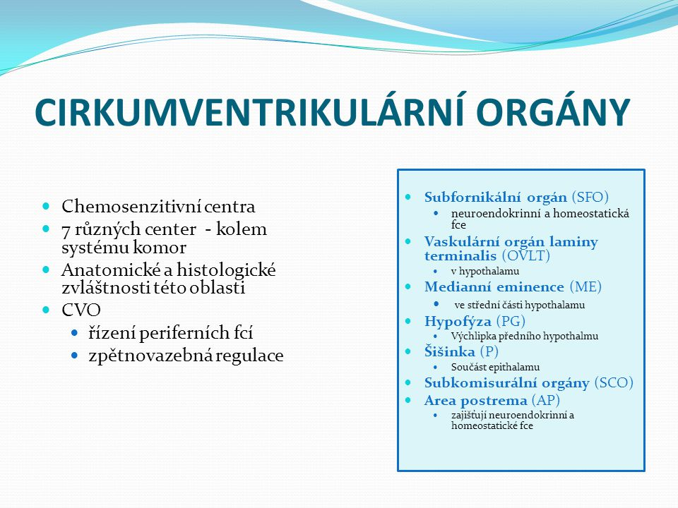 CIRKUMVENTRIKULÁRNÍ ORGÁNY Chemosenzitivní centra 7 různých center - kolem systému komor Anatomické a histologické zvláštnosti této oblasti CVO řízení