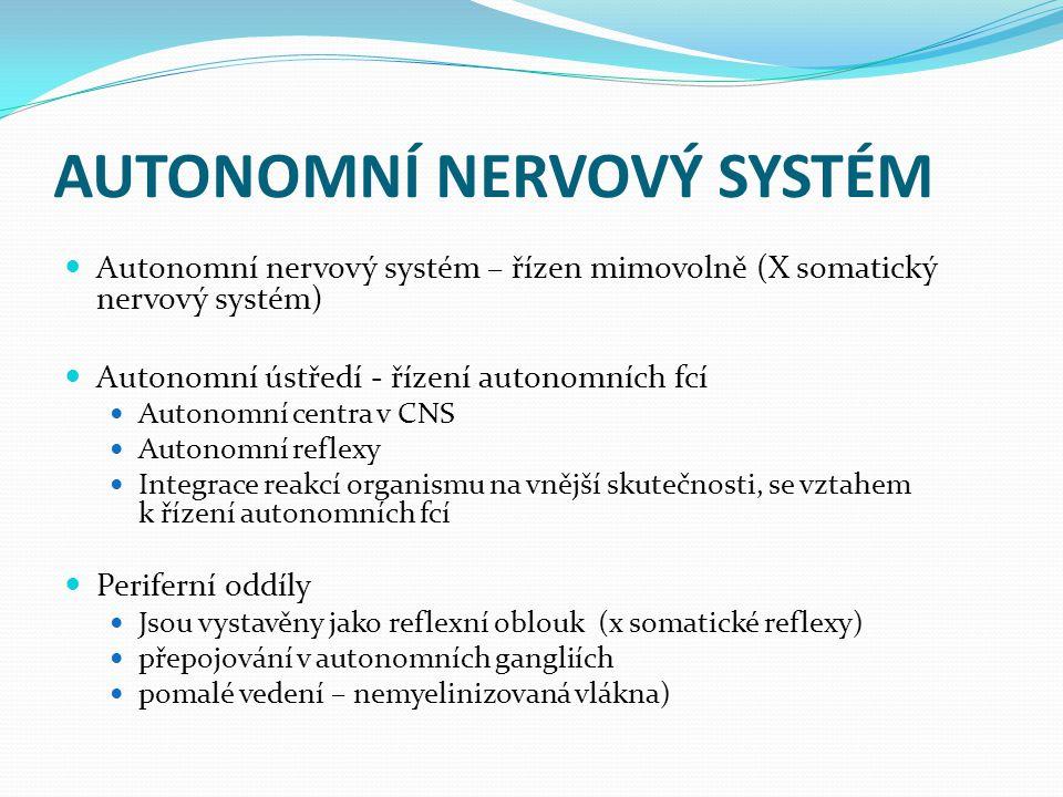 AUTONOMNÍ NERVOVÝ SYSTÉM Autonomní nervový systém – řízen mimovolně (X somatický nervový systém) Autonomní ústředí - řízení autonomních fcí Autonomní