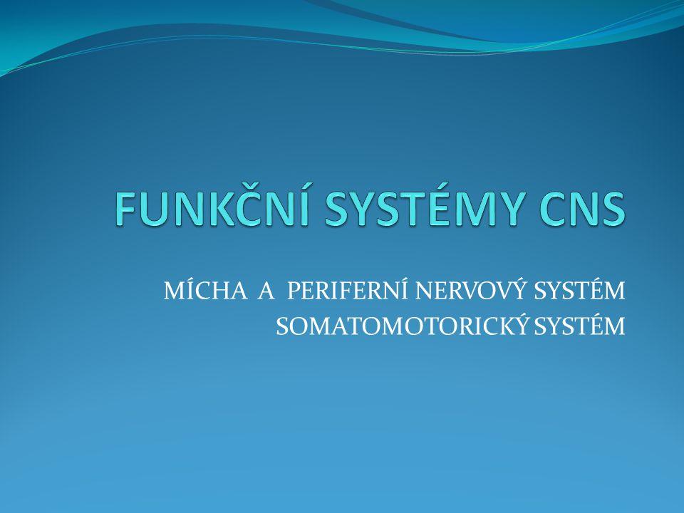 MÍCHA A PERIFERNÍ NERVOVÝ SYSTÉM SOMATOMOTORICKÝ SYSTÉM
