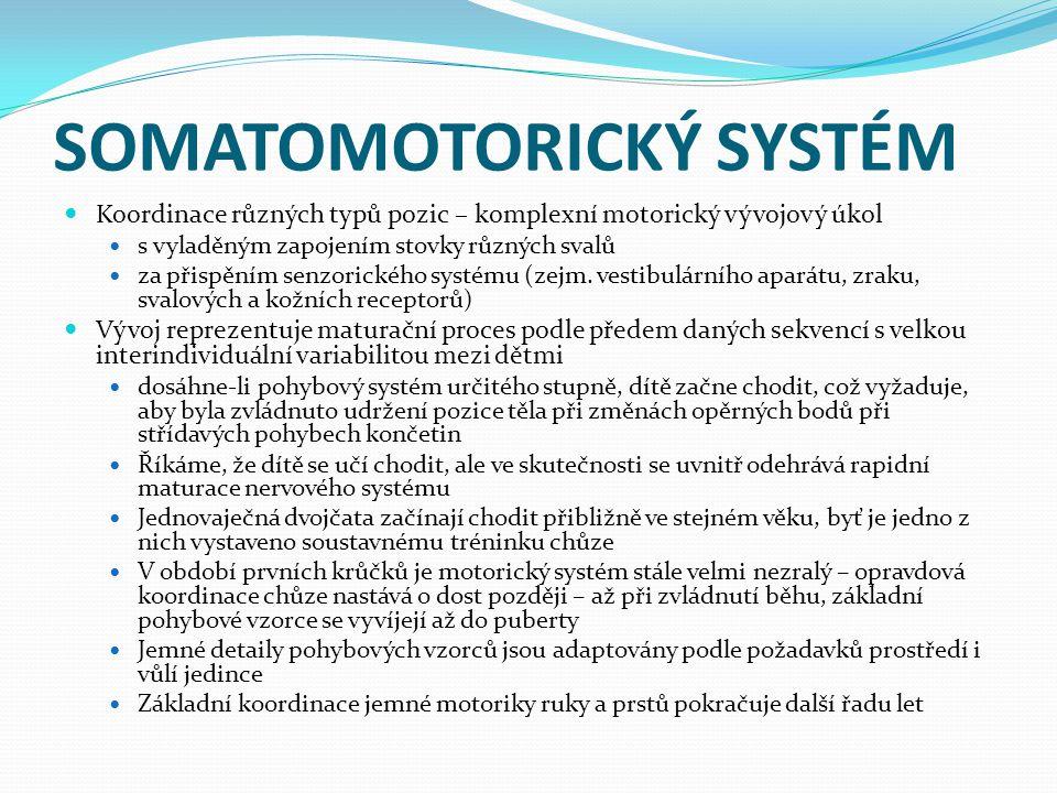 SOMATOMOTORICKÝ SYSTÉM Koordinace různých typů pozic – komplexní motorický vývojový úkol s vyladěným zapojením stovky různých svalů za přispěním senzorického systému (zejm.