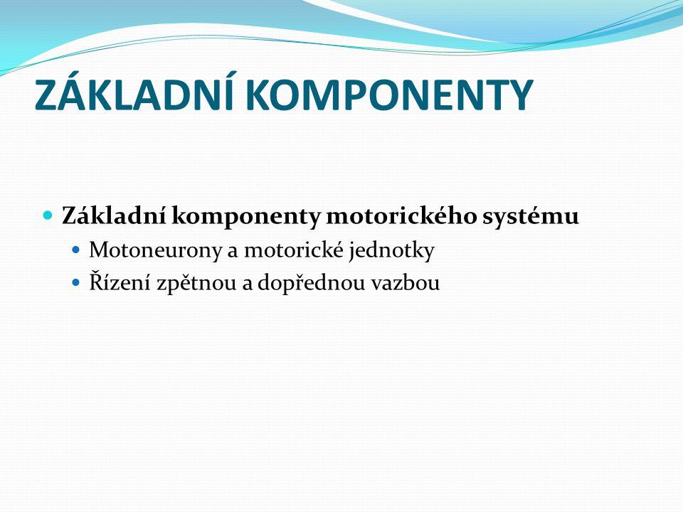ZÁKLADNÍ KOMPONENTY Základní komponenty motorického systému Motoneurony a motorické jednotky Řízení zpětnou a dopřednou vazbou