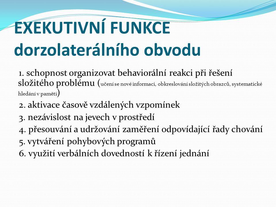EXEKUTIVNÍ FUNKCE dorzolaterálního obvodu 1.