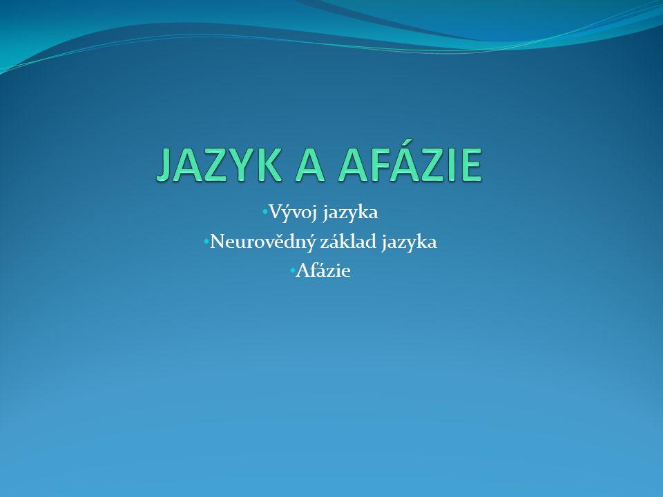 Vývoj jazyka Neurovědný základ jazyka Afázie