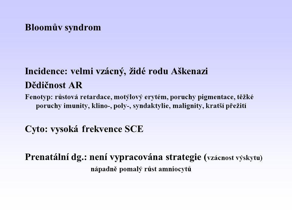 Bloomův syndrom Incidence: velmi vzácný, židé rodu Aškenazi Dědičnost AR Fenotyp: růstová retardace, motýlový erytém, poruchy pigmentace, těžké poruch