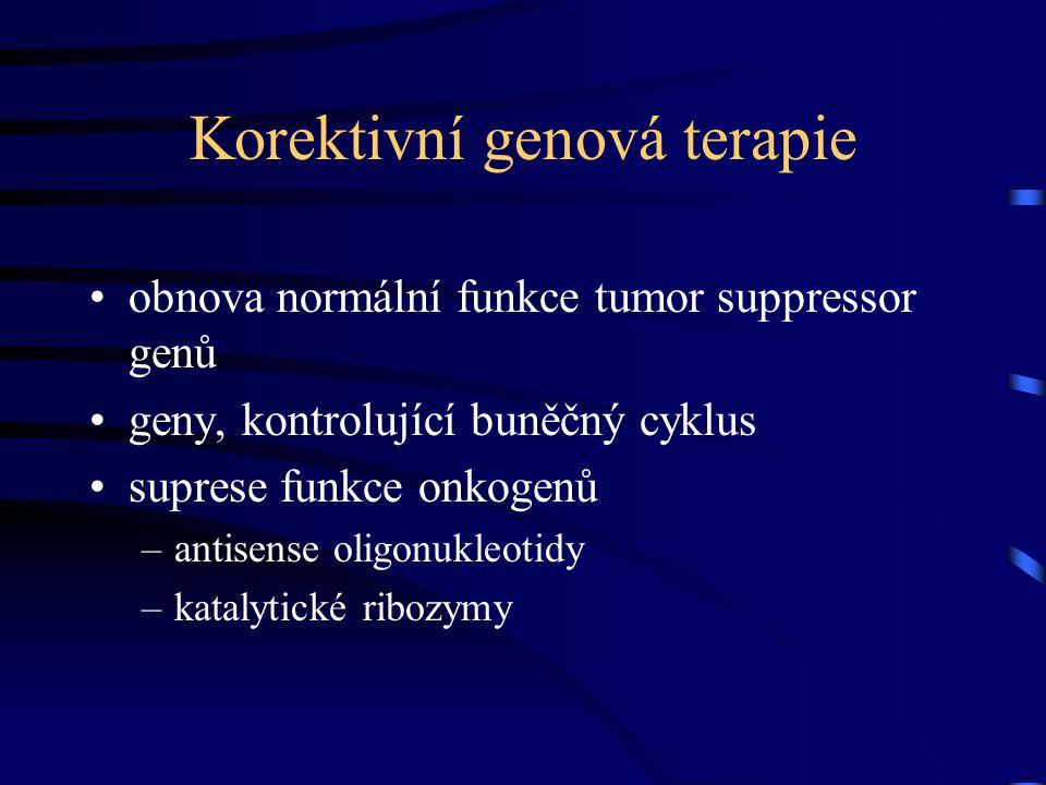 Korektivní genová terapie obnova normální funkce tumor suppressor genů geny, kontrolující buněčný cyklus suprese funkce onkogenů –antisense oligonukleotidy –katalytické ribozymy