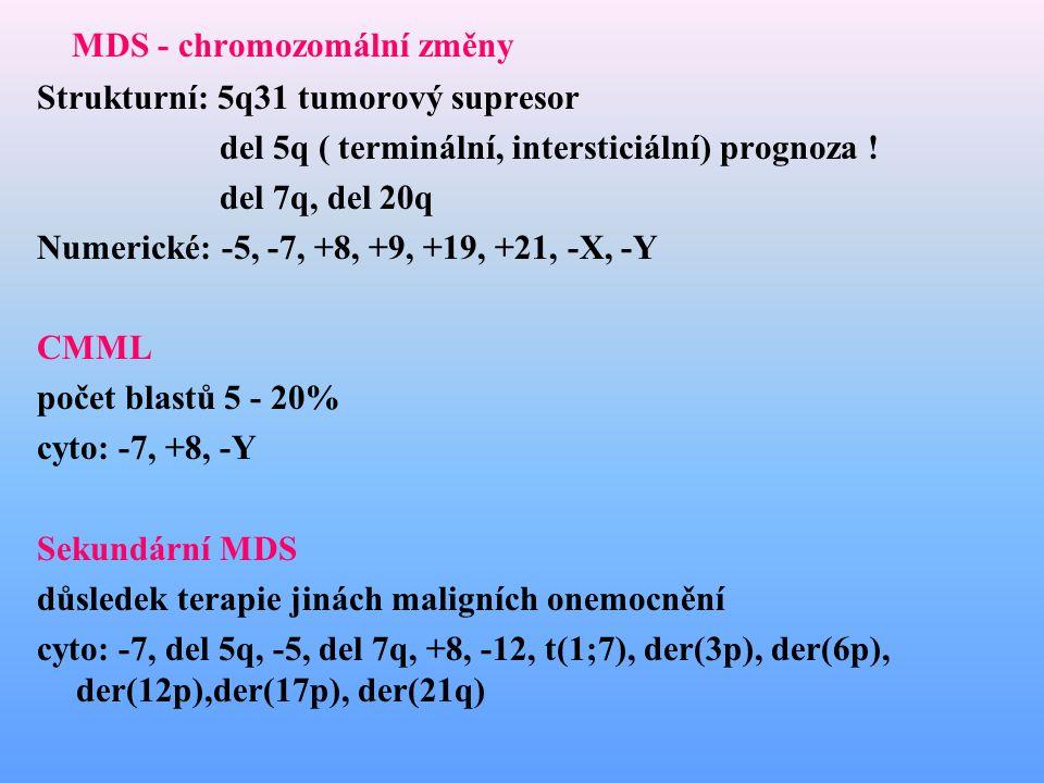 MDS - chromozomální změny Strukturní: 5q31 tumorový supresor del 5q ( terminální, intersticiální) prognoza ! del 7q, del 20q Numerické: -5, -7, +8, +9