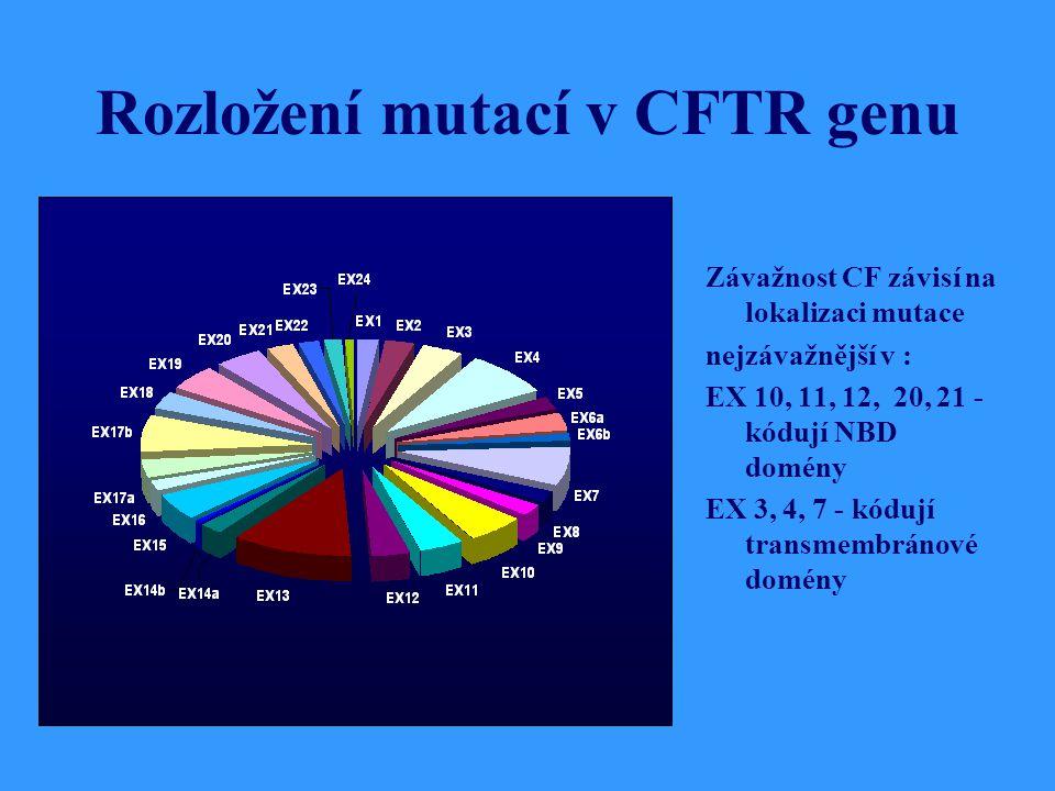Rozložení mutací v CFTR genu Závažnost CF závisí na lokalizaci mutace nejzávažnější v : EX 10, 11, 12, 20, 21 - kódují NBD domény EX 3, 4, 7 - kódují transmembránové domény