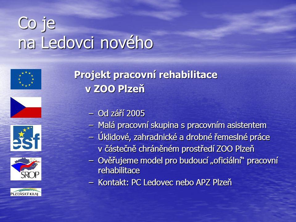 Co je na Ledovci nového Projekt pracovní rehabilitace v ZOO Plzeň –Od září 2005 –Malá pracovní skupina s pracovním asistentem –Úklidové, zahradnické a