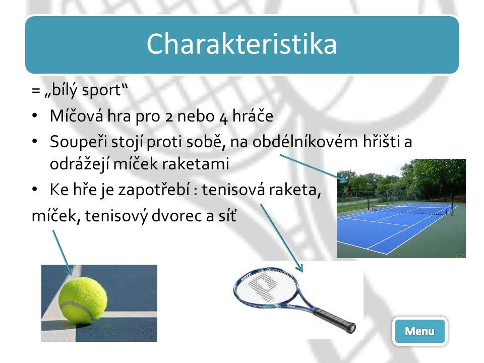 """Charakteristika = """"bílý sport"""" Míčová hra pro 2 nebo 4 hráče Soupeři stojí proti sobě, na obdélníkovém hřišti a odrážejí míček raketami Ke hře je zapo"""