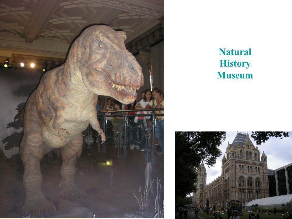 Přejít na první stránku Natural History Museum