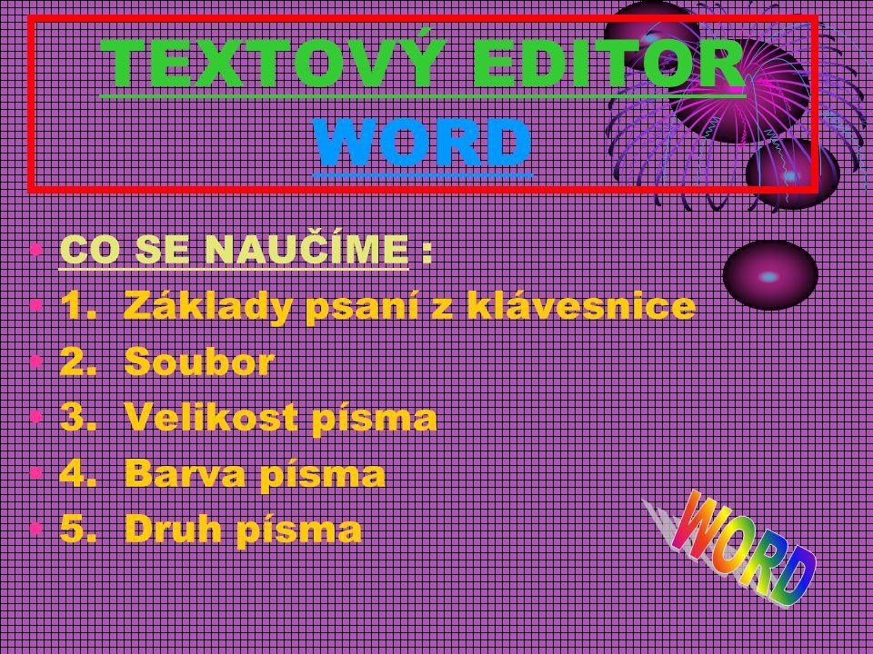 TEXTOVÝ EDITOR WORD CO SE NAUČÍME : 1.Základy psaní z klávesnice 2.