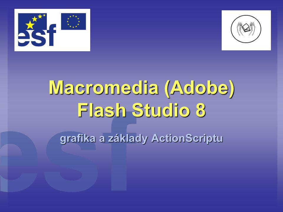 Flash – k čemu to je.