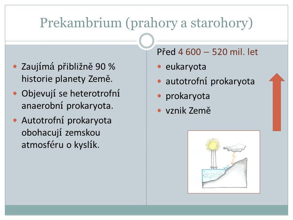 Prekambrium (prahory a starohory) Zauj í m á přibližně 90 % historie planety Země. Objevuj í se heterotrofn í anaerobn í prokaryota. Autotrofn í proka